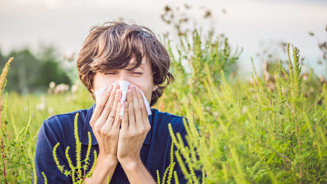 """""""Eksplozja alergii"""", każdy jest zagrożony. Jak sobie pomóc?"""