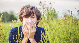 Trudny okres dla alergików