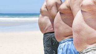 Przeszczep bakterii kałowych od chudych pomoże walczyć grubym z nadwagą?